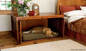 Furniture_for_pets_02