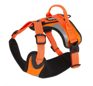 Hurtta_LG_Visibility_harness_orange_autumn20152